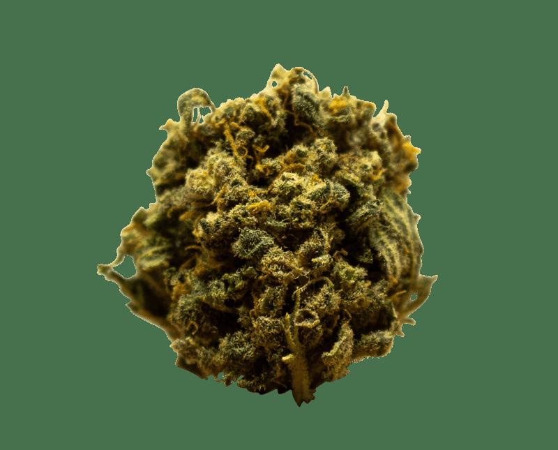 Marihuana cbd ACDC