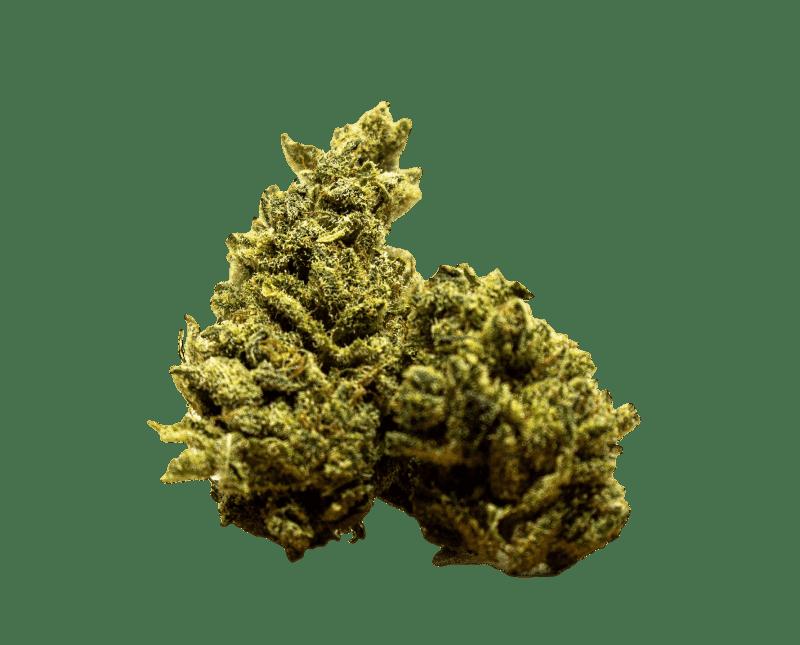 Marihuana OG Kush
