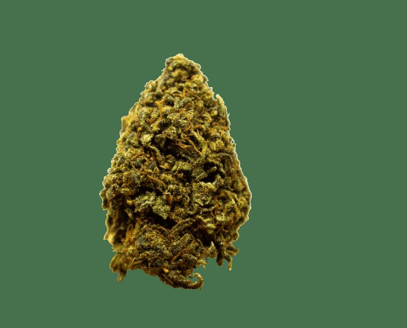 Marihuana tropical skunk
